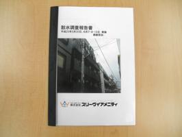 散水調査報告書①.JPG
