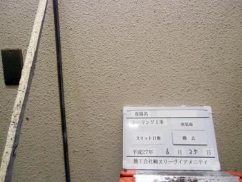 1512_1_07.JPG