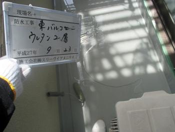 1512_1_13.JPG